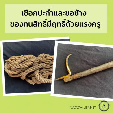 เชือกปะกำและขอช้าง ของทนสิทธิ์มีฤทธิ์ด้วยแรงครู!!!