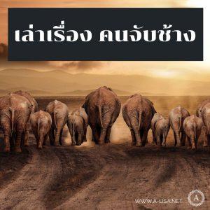 เล่าเรื่อง คนจับช้าง (นวนิยายเรื่อง เมี่ยงคำ)
